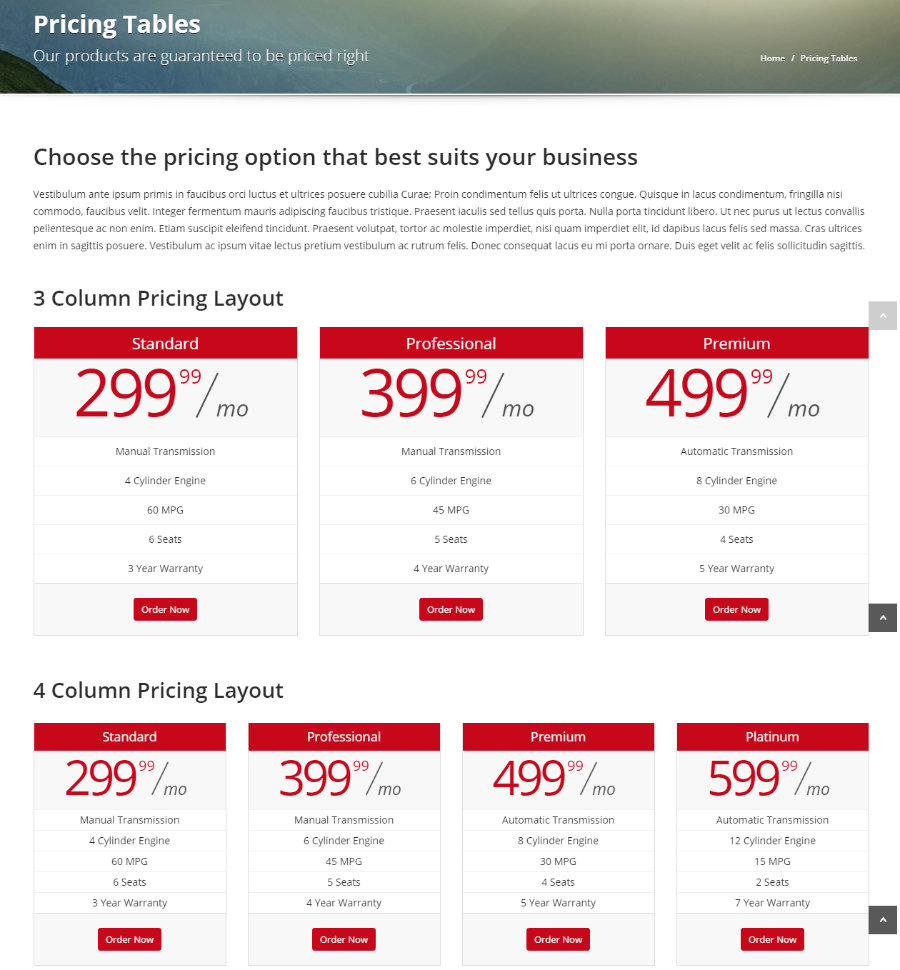 Pricing tables of Automotive car dealership theme.