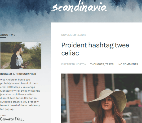 Scandinavia -Blogging WordPress theme