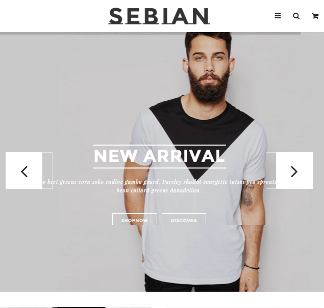 Sebian - Multipurpose Responsive WordPress Ecommerce theme