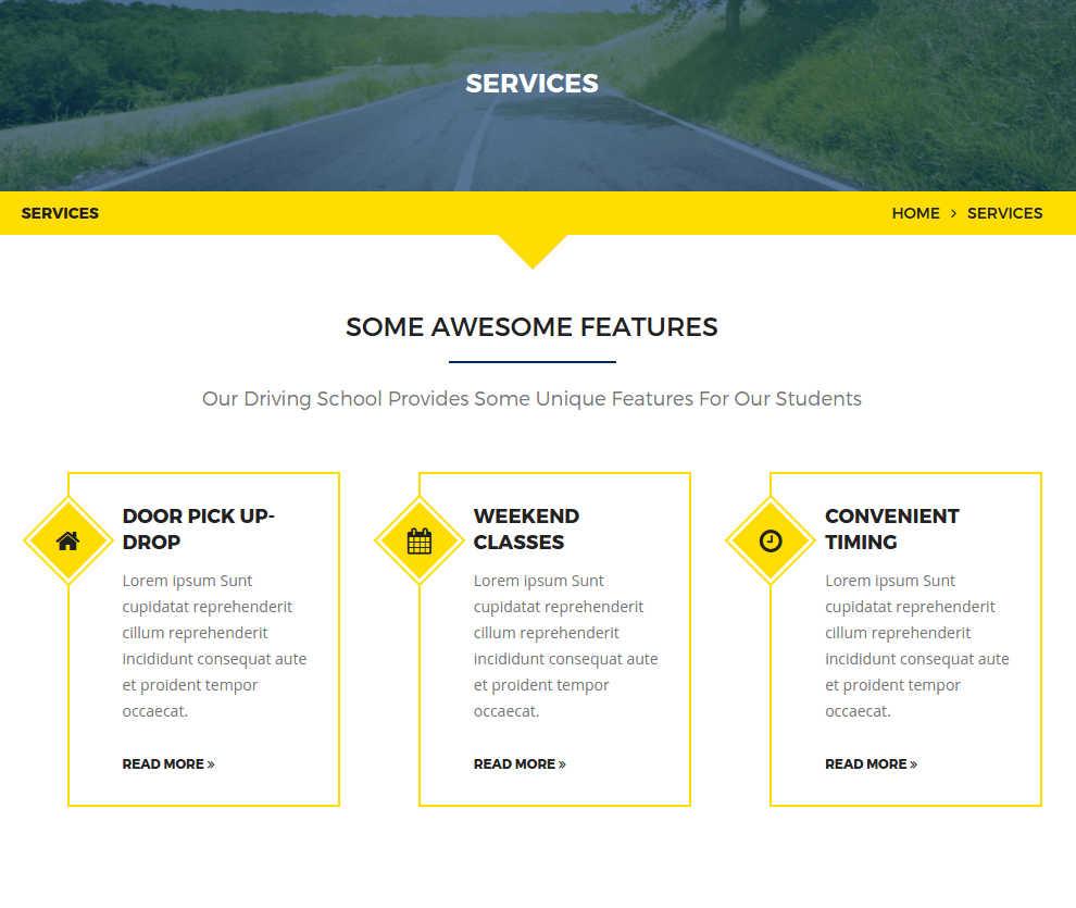 Services page of DrivePro