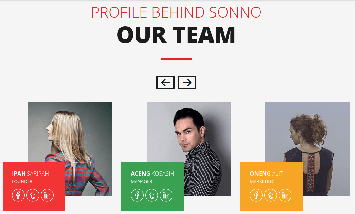 Sonno Team Page