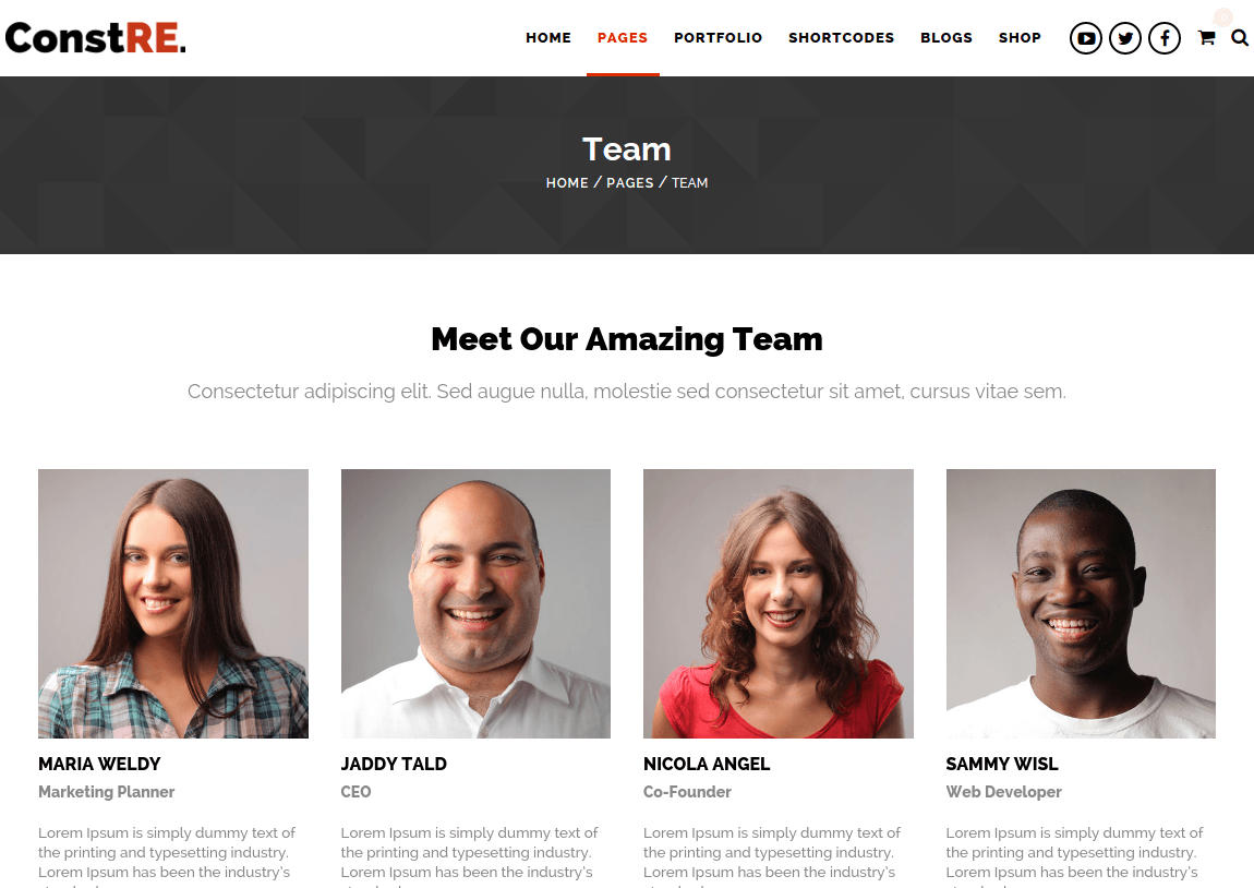 Team Page of ConstRE