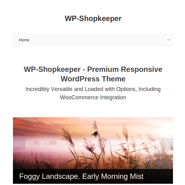 WP-Shopkeepe WordPress Theme
