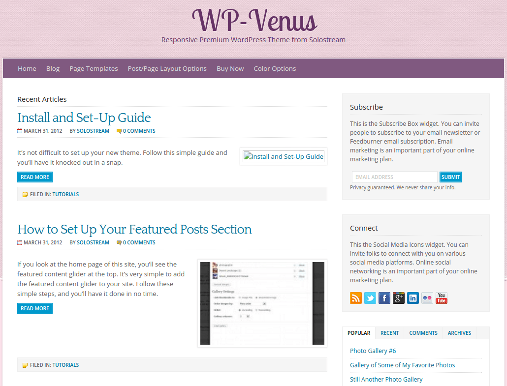 WP-Venus Blog Page
