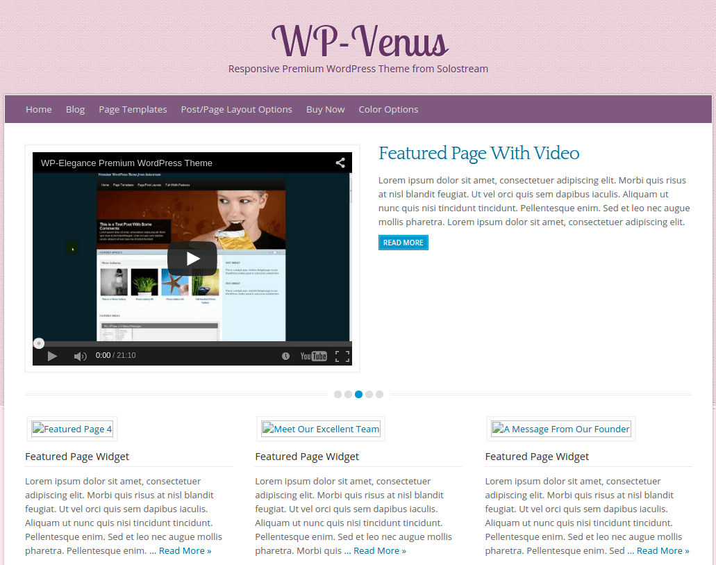 WP-Venus Home Page
