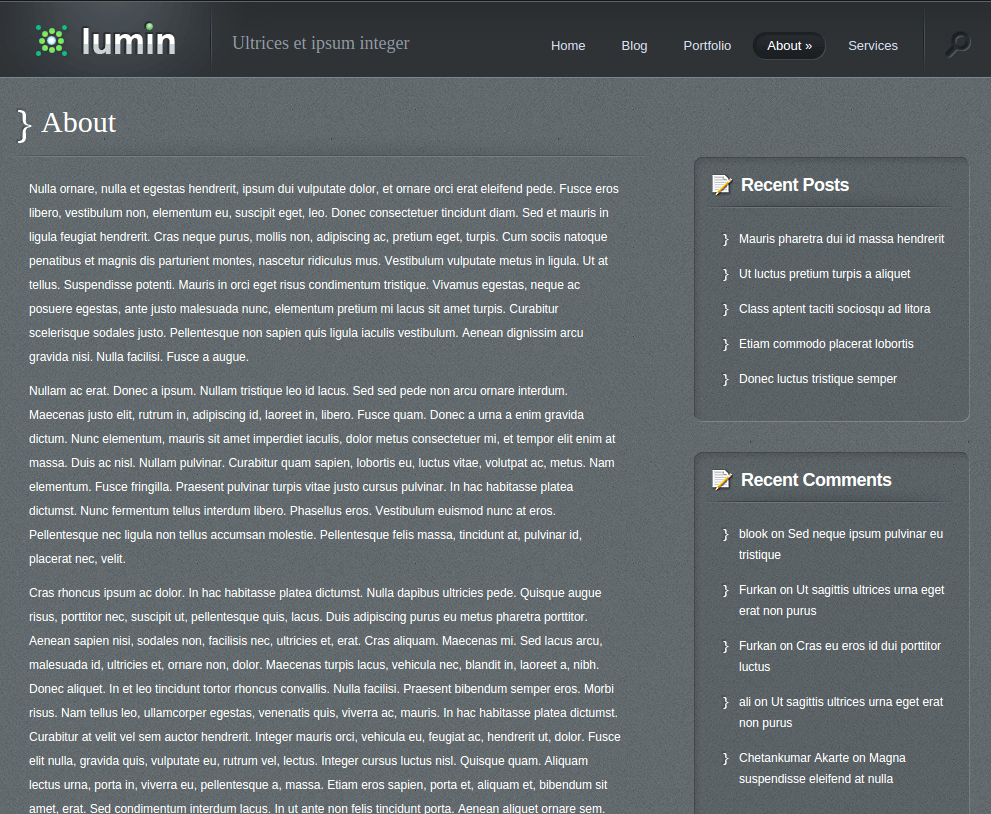 About Us Page of Lumin