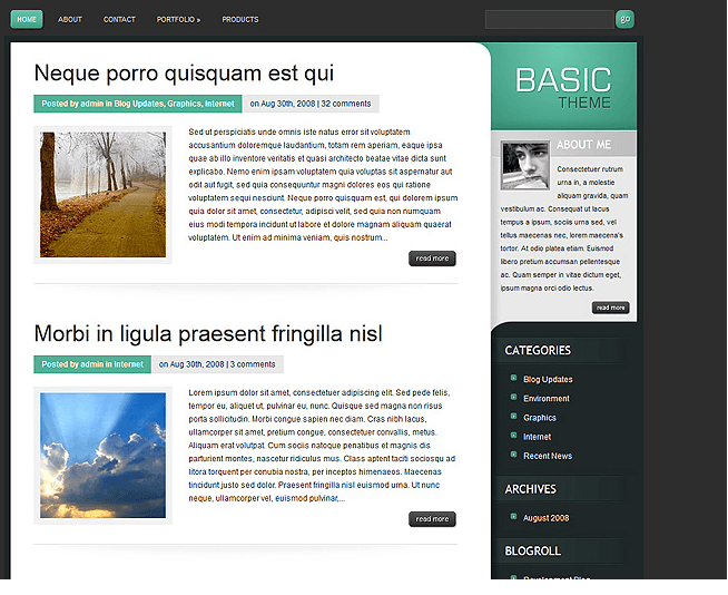 Basic - Blog based WordPress theme