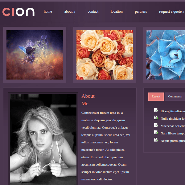 Cion WordPress Theme