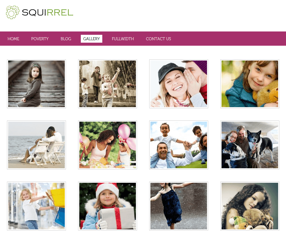 Gallery Page of Squirrel