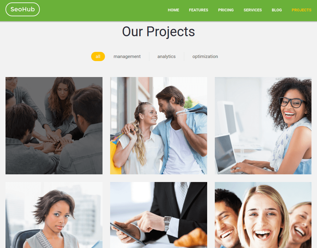Projects Page of SeoHub