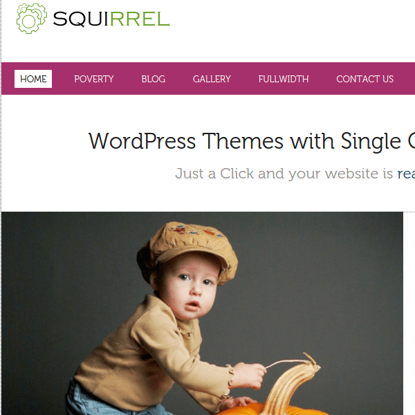 SQUIRREL - MULTIPURPOSE ENABLE WORDPRESS THEME