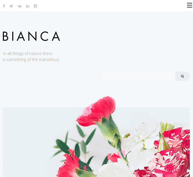 Biancca - Responsive WordPress Blogging theme