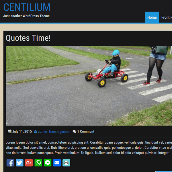 Centilium is responsive and customizable WordPress theme with elegant design and custom colors suitable for bloging.
