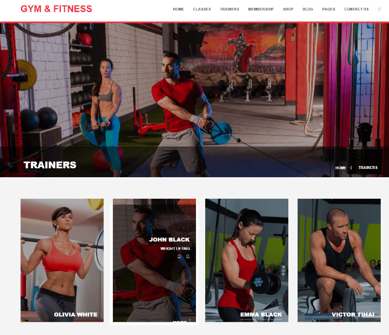 Gym & Fitness - Trainers
