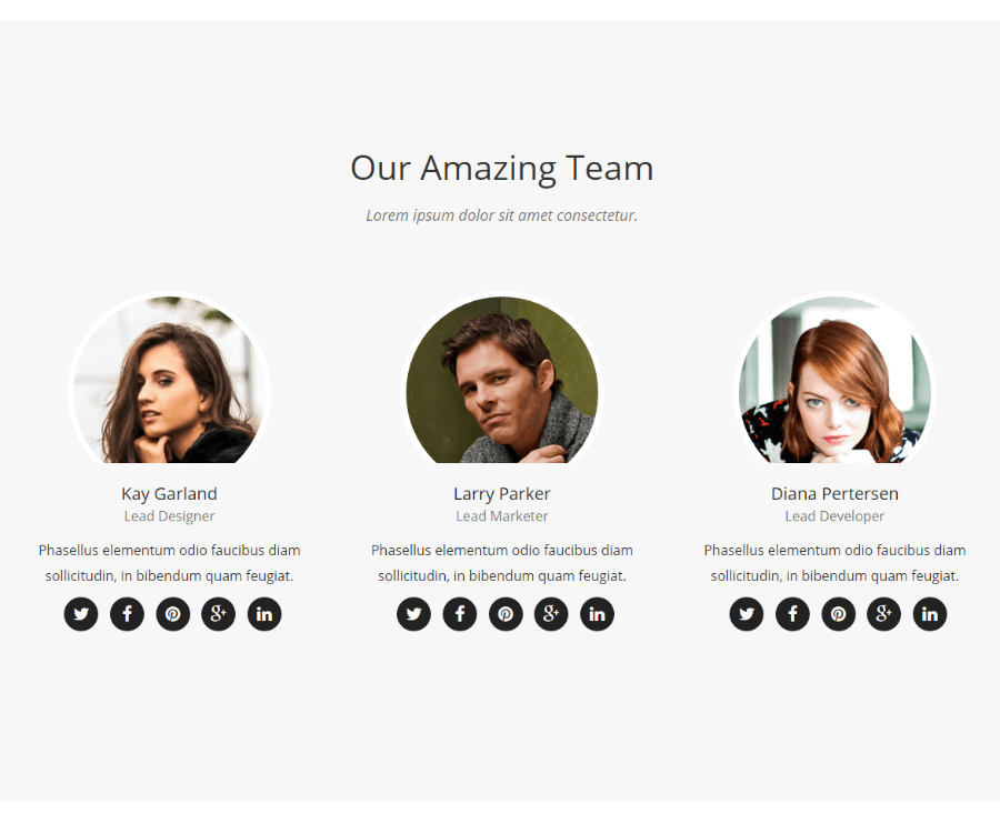 Novelpro - our team