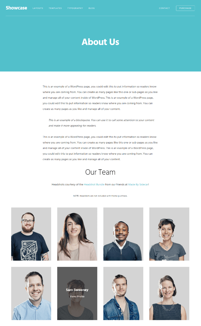 Showcase Pro - Team Page Template